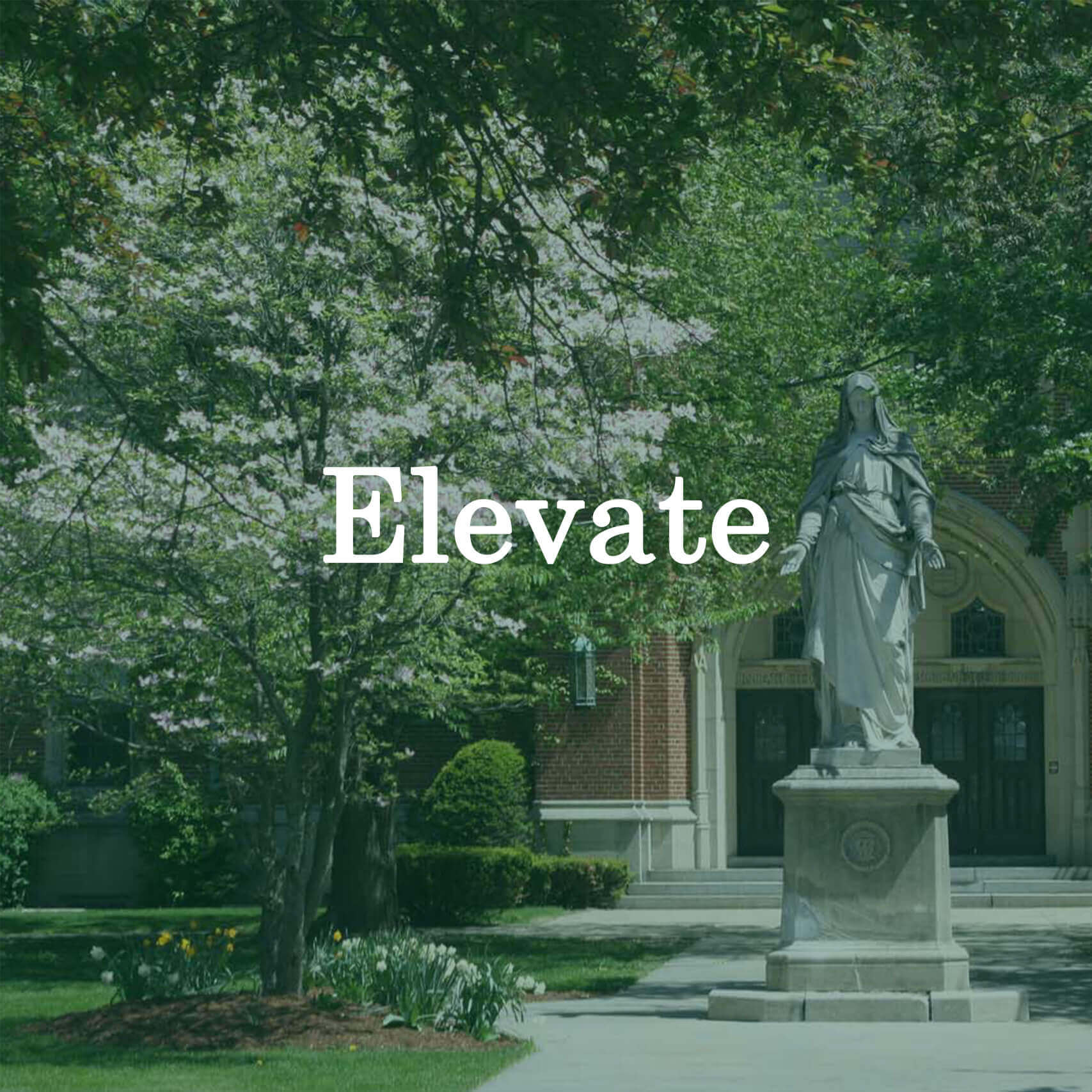 "Photo of the statue of Mary with a text overlay that reads ""Elevate."""