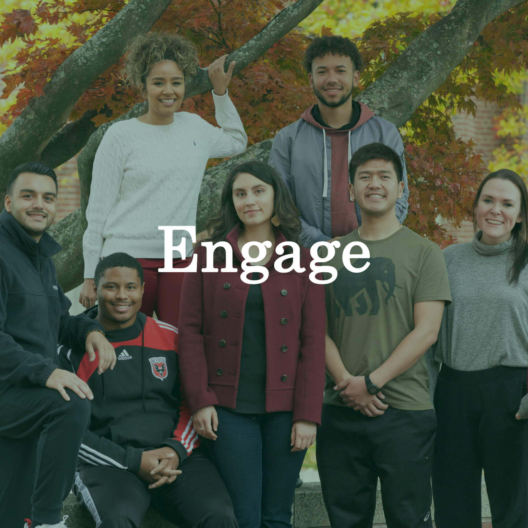 "Photo of students in front of a tree in autumn with a text overlay that reads ""Engage."""
